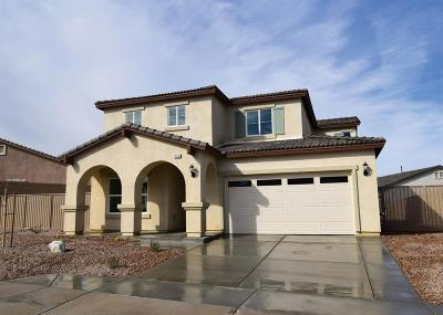Victorville Single Family Home For Sale: 13382 Coolwater Street