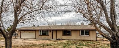 Hesperia Single Family Home For Sale: 18402 Vine Street