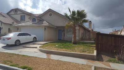 Hesperia Single Family Home For Sale: 9246 Canyon View Avenue