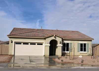 Victorville Single Family Home For Sale: 13394 Coolwater Street