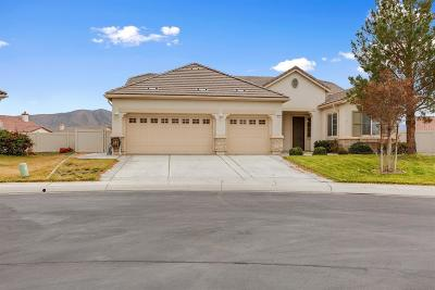 Apple Valley Single Family Home For Sale: 19767 Gazania Street