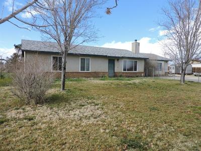 Apple Valley Single Family Home For Sale: 10056 Kiowa Road