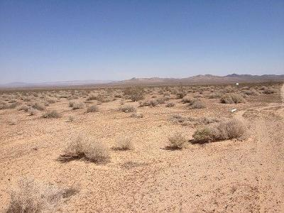 Helendale CA Residential Lots & Land For Sale: $10,500