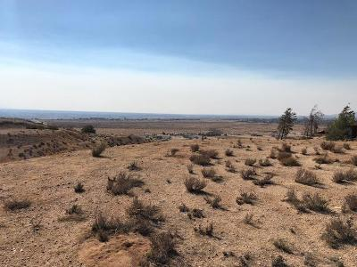 Apple Valley CA Residential Lots & Land For Sale: $30,000
