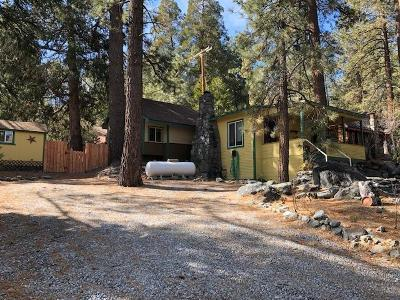 Wrightwood Single Family Home For Sale: 1593 Twin Lakes Road