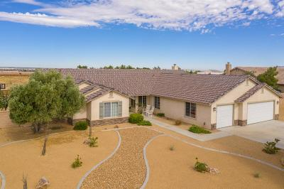 Apple Valley Single Family Home For Sale: 12520 Highline Drive