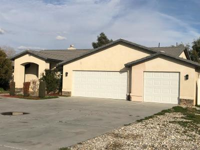 Apple Valley Single Family Home For Sale: 14385 Navajo Road