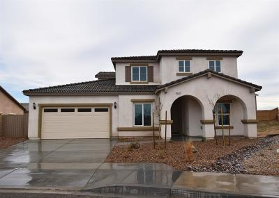 Victorville Single Family Home For Sale: 13373 Coolwater Street