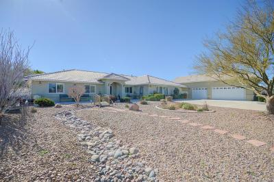 Apple Valley Single Family Home For Sale: 21977 Mojave Street