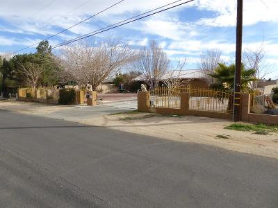 Victorville Single Family Home For Sale: 15641 Jasmine Street
