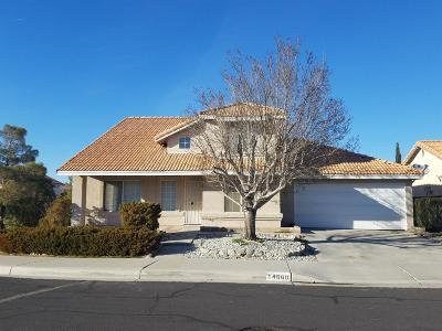Victorville Single Family Home For Sale: 14660 Pony Trail Court