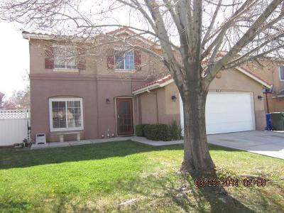 Victorville Single Family Home For Sale: 14734 Arabian Run Lane