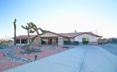 Apple Valley Single Family Home For Sale: 16180 Joshua Road