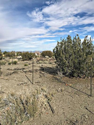 San Bernardino County Residential Lots & Land For Sale: Beekley 02 Road