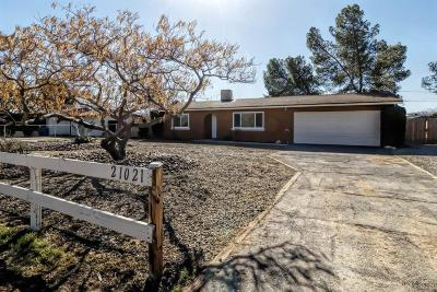Apple Valley Single Family Home For Sale: 21021 Lone Eagle Road