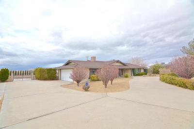Apple Valley Single Family Home For Sale: 13224 Choco Road
