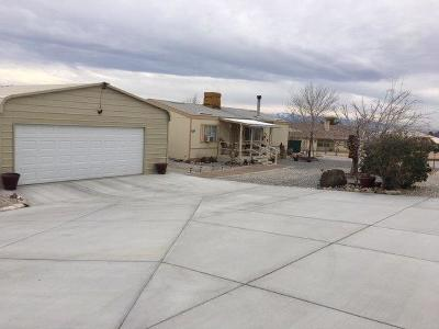 Apple Valley Single Family Home For Sale: 23867 South Road