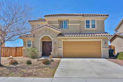 Victorville Single Family Home For Sale: 16914 Grand Triassic Lane