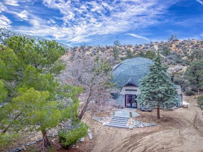 Wrightwood Single Family Home For Sale: 1486 Desert Front Road
