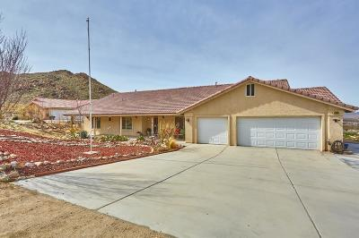 Apple Valley Single Family Home For Sale: 14938 Byron Drive