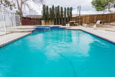 Victorville Single Family Home For Sale: 14025 Northstar Avenue