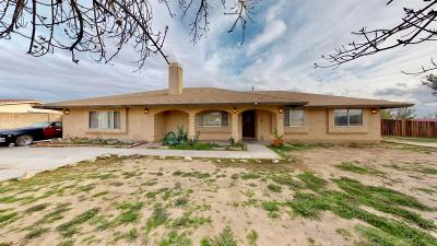 Apple Valley Single Family Home For Sale: 15361 Mondamon Road