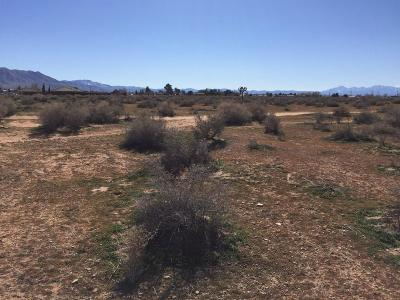 Apple Valley Residential Lots & Land For Sale: Little Beaver Road