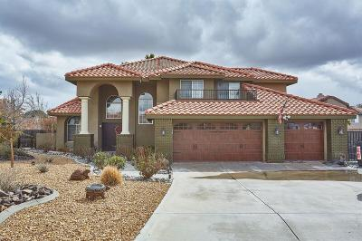 Apple Valley Single Family Home For Sale: 20443 Little Bear Court