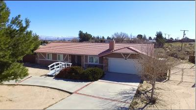 Apple Valley Single Family Home For Sale: 15006 Tuscola Road