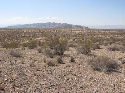 Apple Valley CA Residential Lots & Land For Sale: $148,888