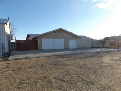 Adelanto Single Family Home For Sale: 9120 Cactus Road