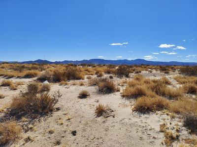 Newberry Springs CA Residential Lots & Land For Sale: $16,000