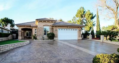 Victorville Single Family Home For Sale: 18246 Kalin Ranch Road