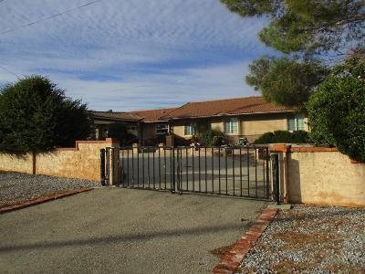 Hesperia Single Family Home For Sale: 16624 Ash Street