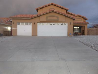 Victorville Single Family Home For Sale: 17095 Grand Mammoth Place