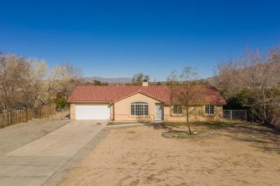 Hesperia Single Family Home For Sale: 8820 Arrowhead Lake Road