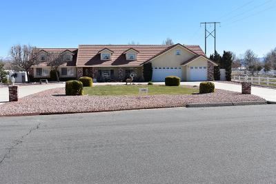 Apple Valley Single Family Home For Sale: 12480 Reata Road