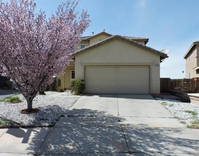 Victorville Single Family Home For Sale: 15284 Sunchaser Street