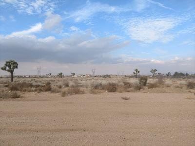 Victorville CA Residential Lots & Land For Sale: $165,000