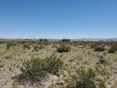 Newberry Springs Residential Lots & Land For Sale: Autumn Leaf Road