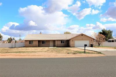 Apple Valley Single Family Home For Sale: 14709 Dakota Road