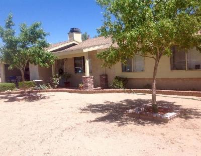 Hesperia Single Family Home For Sale: 15586 Juniper Street