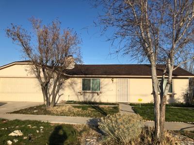Apple Valley Single Family Home For Sale: 11177 Kiowa Road