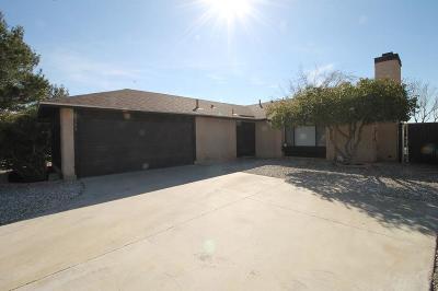 Victorville Single Family Home For Sale: 15209 Wildrose Street