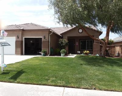 Victorville Single Family Home For Sale: 13586 Dellwood Road