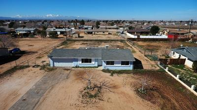 Apple Valley Single Family Home For Sale: 10852 Malgosa Road