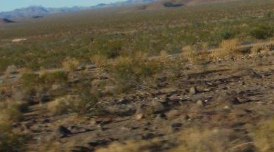El Mirage Residential Lots & Land For Sale: Adobe Mountain Rd Road