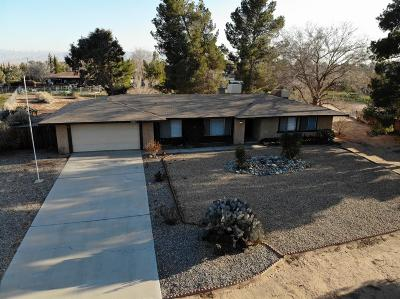Apple Valley Single Family Home For Sale: 20807 Powhatan Road