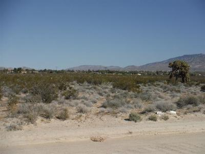 Lucerne Valley Residential Lots & Land For Sale: Clark Street
