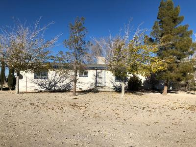Lucerne Valley Single Family Home For Sale: 9372 Mesa Road